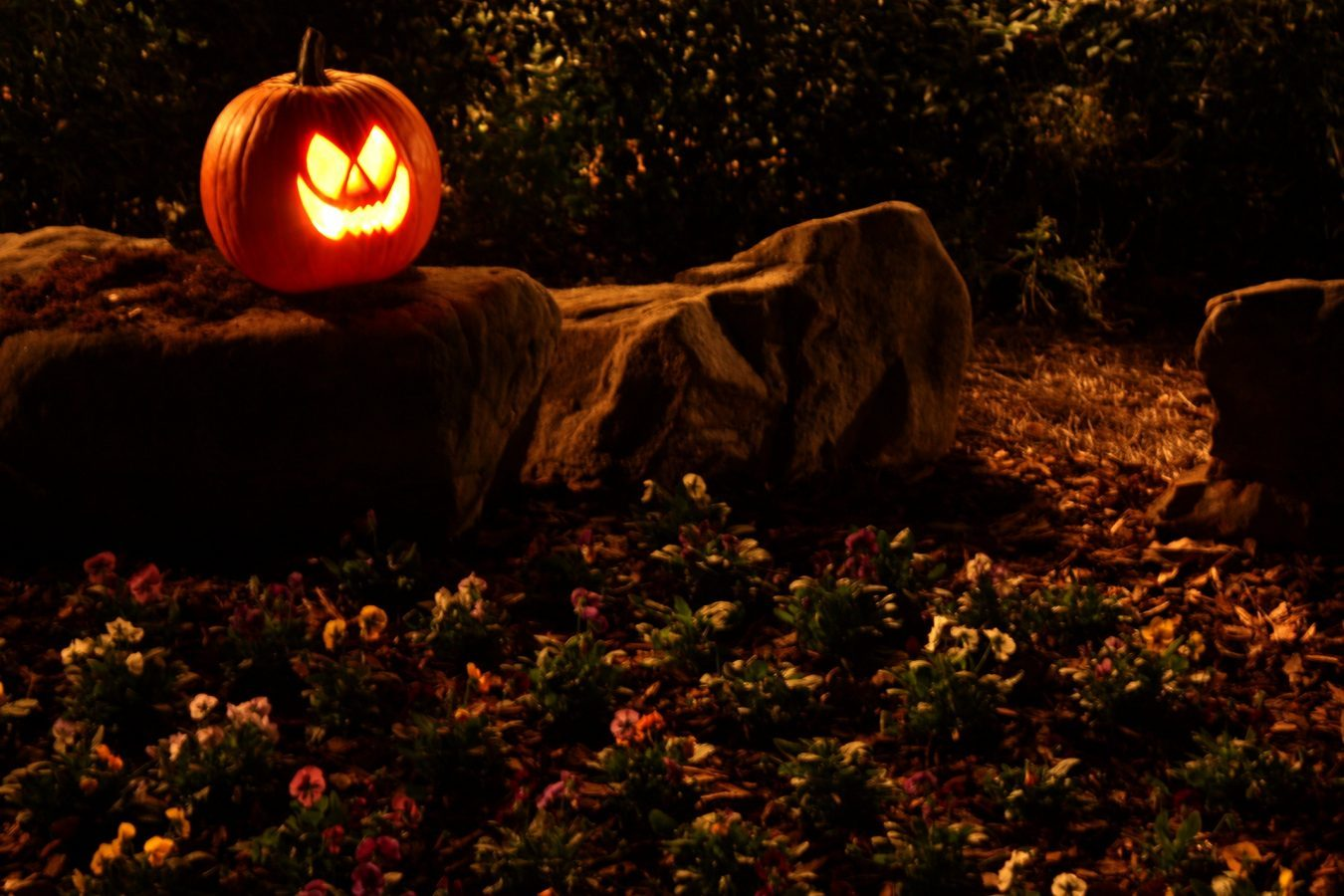 Trick Or Treat: Are You Delighting Your Customers?
