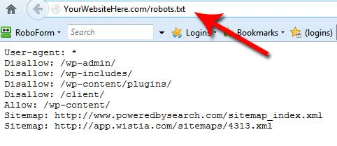 Viewing a robots.txt file in the web browser